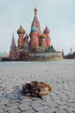 Moscow, Russia, 1993 - ©Steve McCurry
