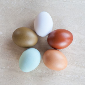 Uova di galline di razza Livorno, dal colore naturale