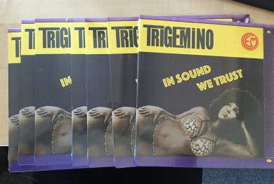 Trigemino-villa-ada-2016-2