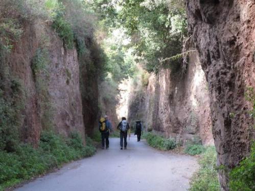 camminata-via-francigena-viterbo-roma-1