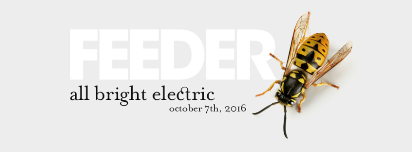 feeder-all-bright-electric-2016-nuovo-album-2