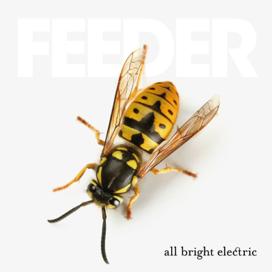 feeder-all-bright-electric-2016-nuovo-album-3