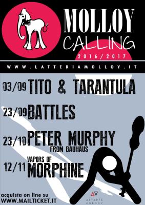 Molloy-Calling-Latteria-Molloy-2016-2017-1