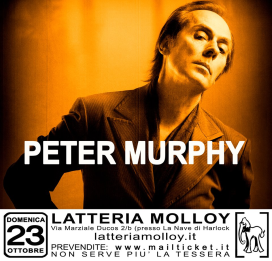 Molloy-Calling-Latteria-Molloy-2016-2017-3