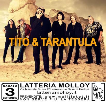 Molloy-Calling-Latteria-Molloy-2016-2017-4