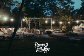 dogs-night-roma-2016-4