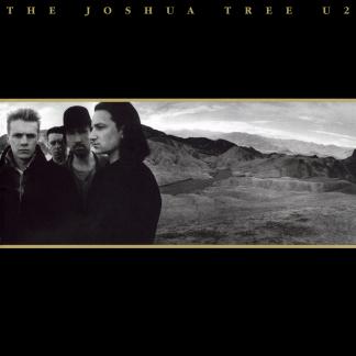 the-joshua-tree-u2-roma-1