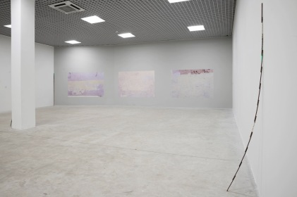 Sreshta Rit Premnath, Cadere/Rose, 2017. Installation view, Nomas Foundation, Roma. Courtesy dell'artista. Ph. Marco Passaro