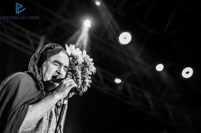 elio-e-le-storie-tese-ex-dogana-viteculture-festival-_sofiabucci_16