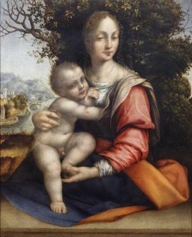 Cesare da Sesto Madonna col Bambino (Madonna dell'Albero), 1515-1520 Olio su tavola, 45,2x36,4 cm Milano, Pinacoteca di Brera