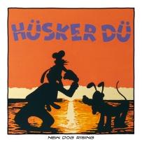 15.HUSKERDUHardcore-for-Dummies-marina-bolmini-parione9-roma