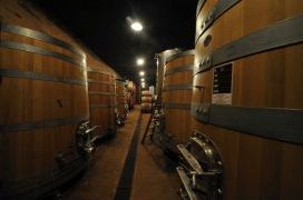 mercato-di-roma-vino-vignaioli-I-Vignaioli-della-Fivi-–-La-cantina-della-Stoppa-–-Immagine-2521-×-1678-px