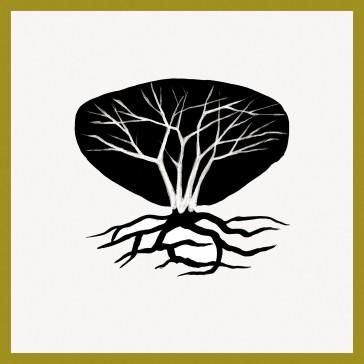 plantae-eureka-2018-roma-_Andreco_cespuglio