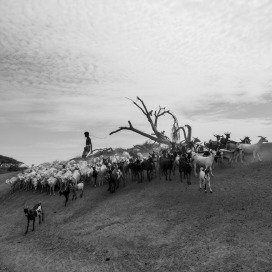 Tsegaye,Layers-of-movement-II,-2017,-digital-photography-(Platinum-Baryta-300-paper),-50x50-cm_light