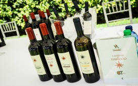 vino-e-arte-che-passione-roma-2018-0028