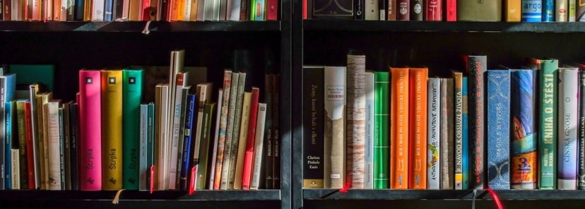 biblioteca-laurentina-centro-elsa-morante-2018-98