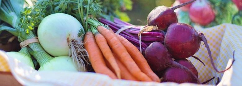 spreco-alimentare-food-roma-capitale-protocollo-2018-98