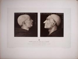 24.ASF1395 Perugino Braun