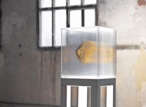 9-isabel-alonso-vega_gold-ii_foglia-d'oro-su-plexiglass_40x40x13cm_2018-white-noise-gallery