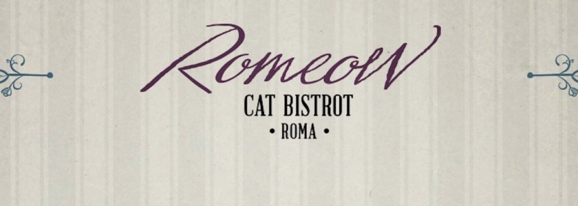 romeow-cat-bistrot-roma-libroterapia-2019-3-98