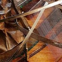 """""""Piano di curve sonore"""", arte e musica si fondono da MACRO"""