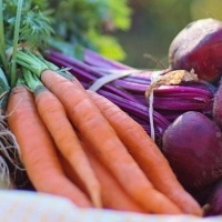 Too Good To Go, l'app che combatte lo spreco di cibo nel mondo