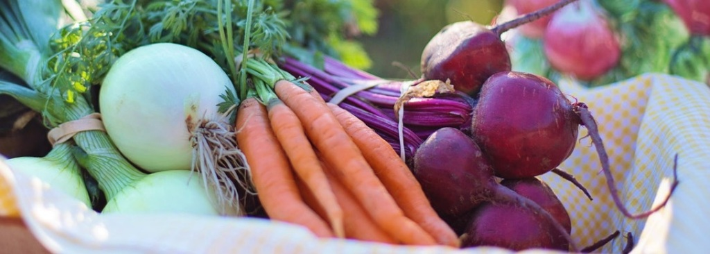 cibo-food-verdure-ortaggi