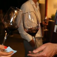 16 anni di Vinòforum! Il Parco di Tor di Quinto è il nuovo spazio del festival