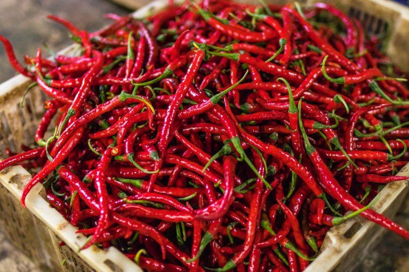 chilli-peperoncino-pepper-1
