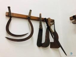 Museo-Civiltà-Contadina-Fiumicino-2019-IMG_2712