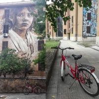 Street art & Bike, ecco i prossimi tour al Parco della Caffarella