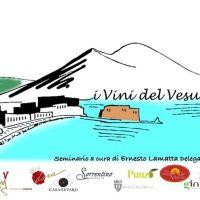 I vini del Vesuvio in degustazione all'Hotel Tiber
