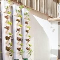 Nasce Design Food House, lo spazio creativo dedicato al cibo