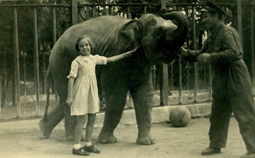 album-di-roma-elefantino-foto-bianco-e-nero-con-bambina