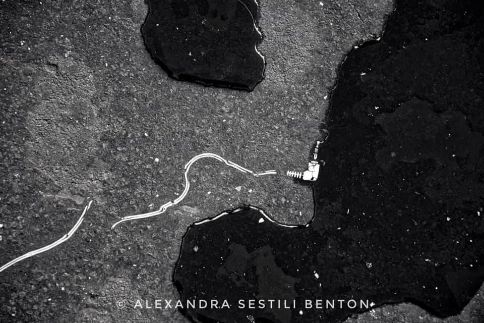 welcome-to-silent-hill-alexandra-benton-foto-wire-puddle
