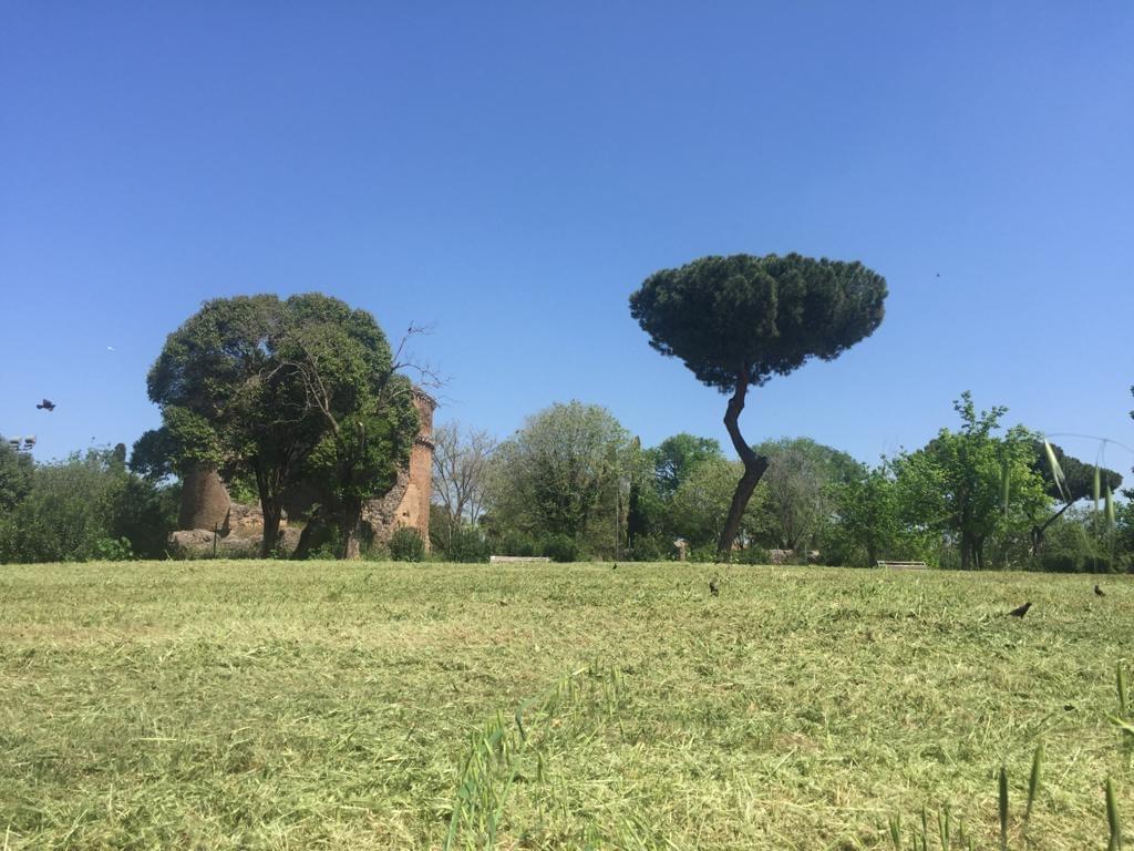 mausoleo-villa-gordiani-prato-parco-alberi