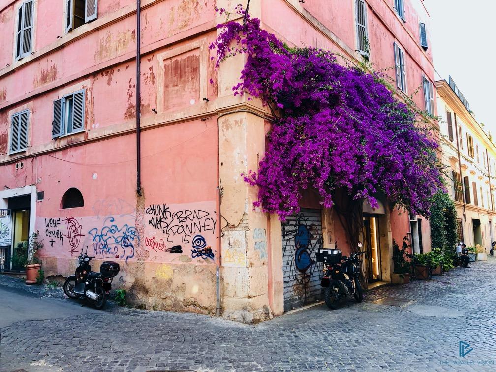 rioni-di-roma-the-parallel-vision-foto-monti-strade-monumenti-vicoli-bouganville