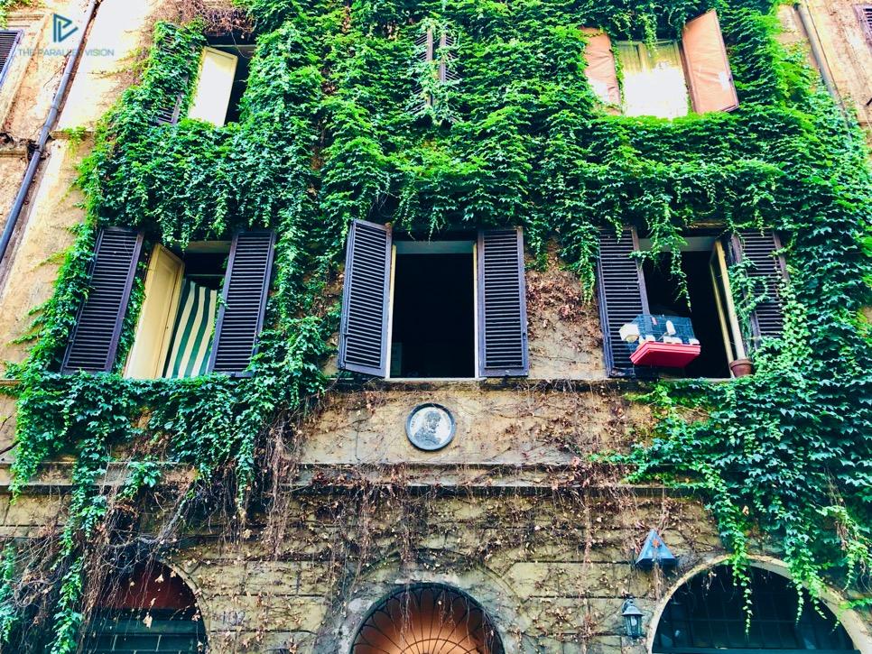 rioni-di-roma-the-parallel-vision-foto-monti-strade-monumenti-vicoli-edera
