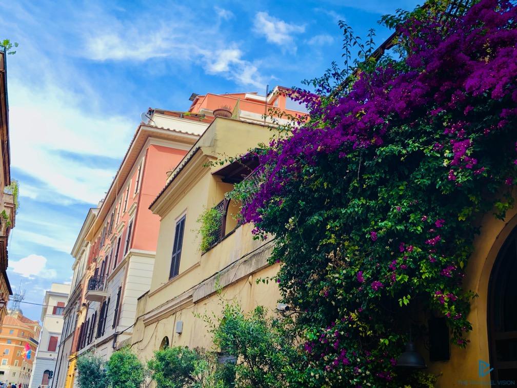 rioni-di-roma-the-parallel-vision-foto-trastevere-strade-monumenti-vicoli-fiori-edera