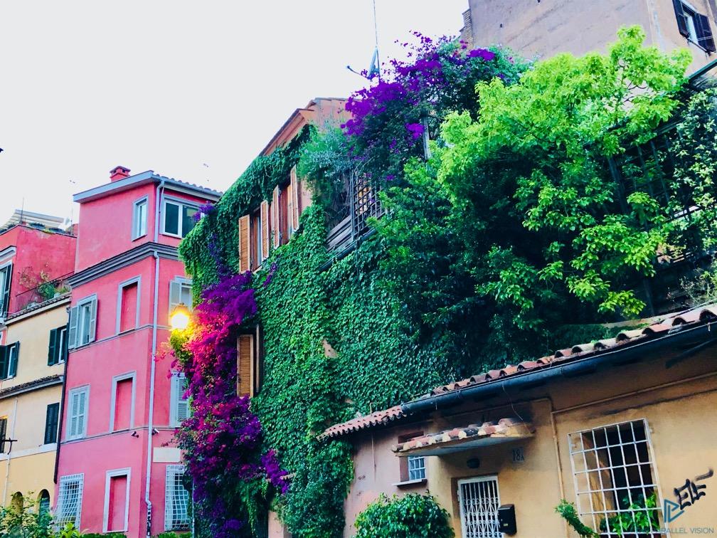 rioni-di-roma-the-parallel-vision-foto-trastevere-strade-monumenti-vicoli-edera-palazzi