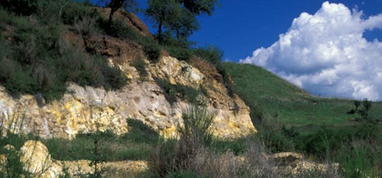 prato-roccia-alberi-verde-green-ambiente-cielo-nuvola