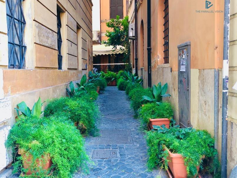 rioni-di-roma-the-parallel-vision-foto-campo-marzio-strade-monumenti-vicoli-verde-green-piante