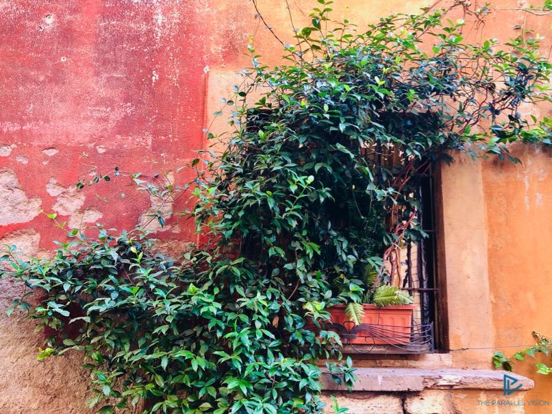 rioni-di-roma-the-parallel-vision-foto-campo-marzio-strade-monumenti-vicoli-verde-green