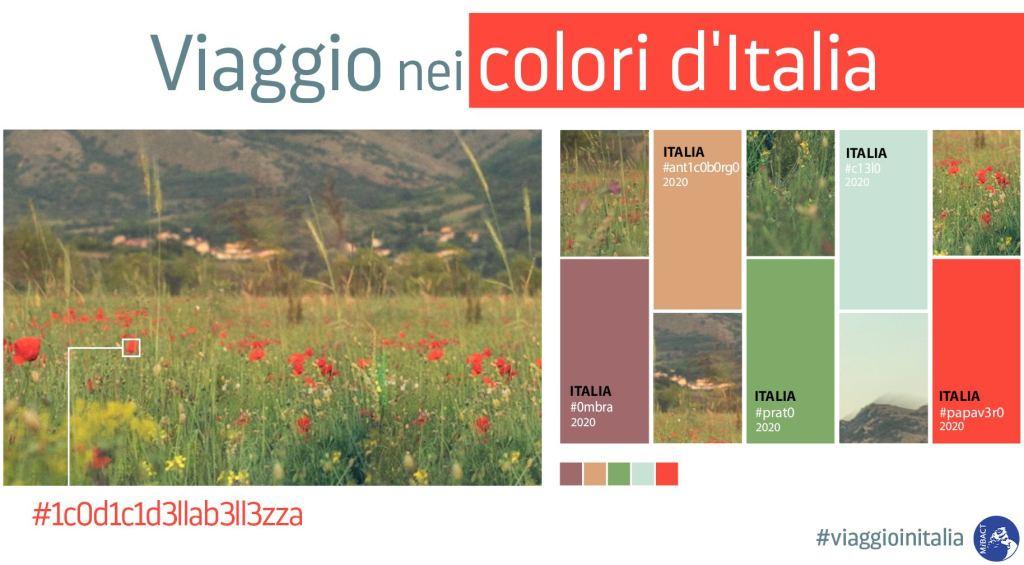viaggio-nei-colori-ditalia-prato-fiori