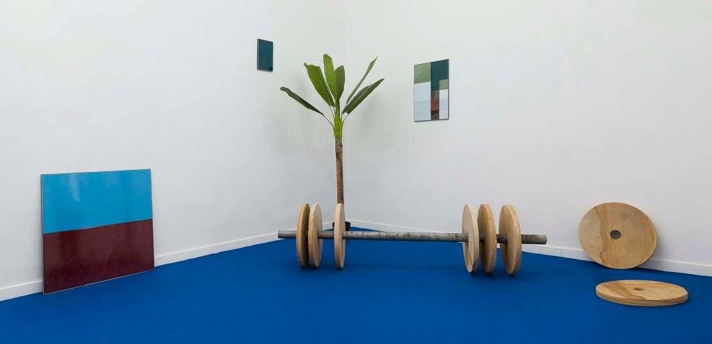 pavimento-blu-palma-bilancere-legno-pareti-bianche