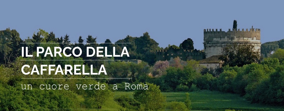 caffarella-verde-alberi-green-parco-torre