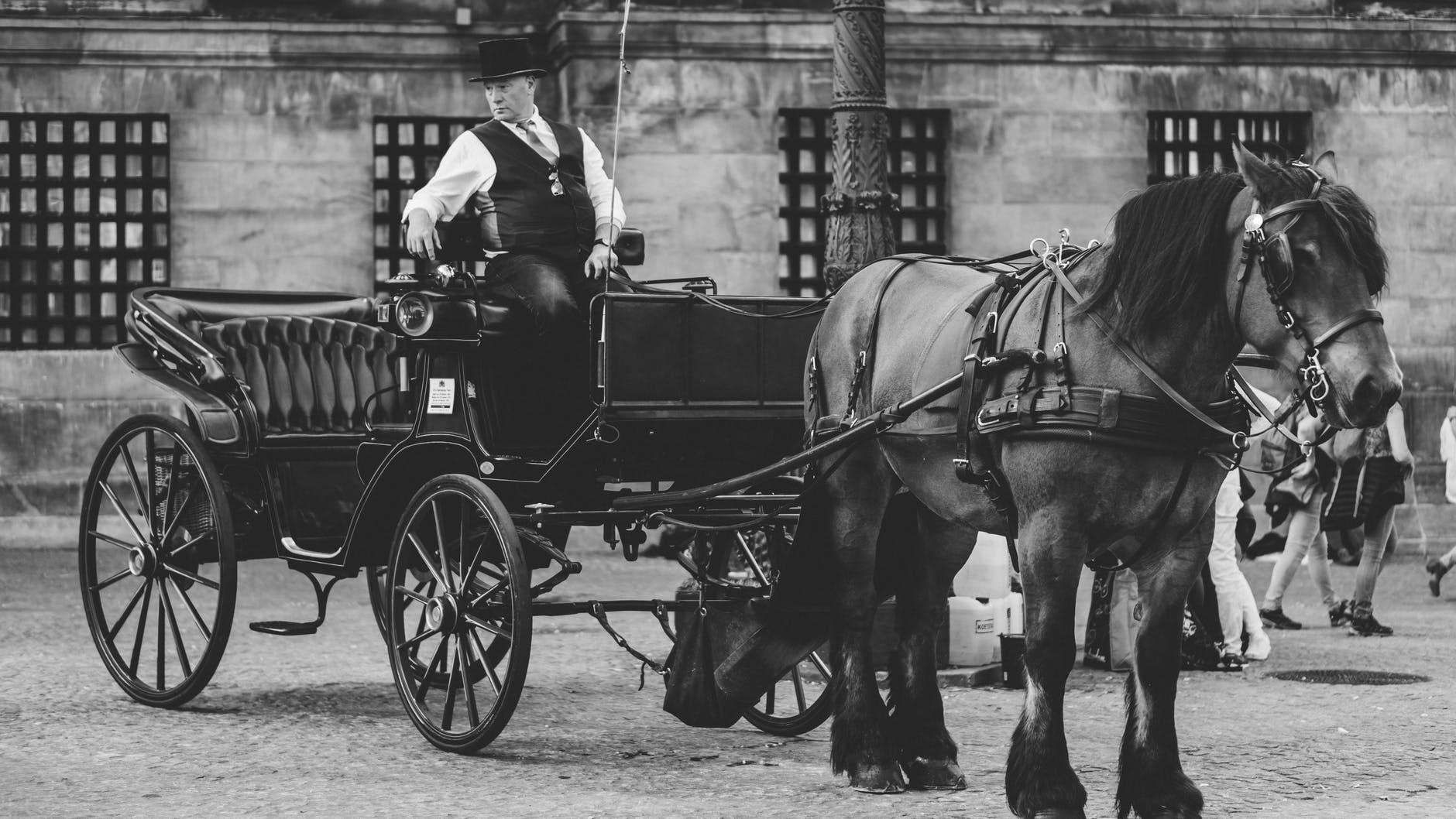carrozza-carriage-coach-cavallo