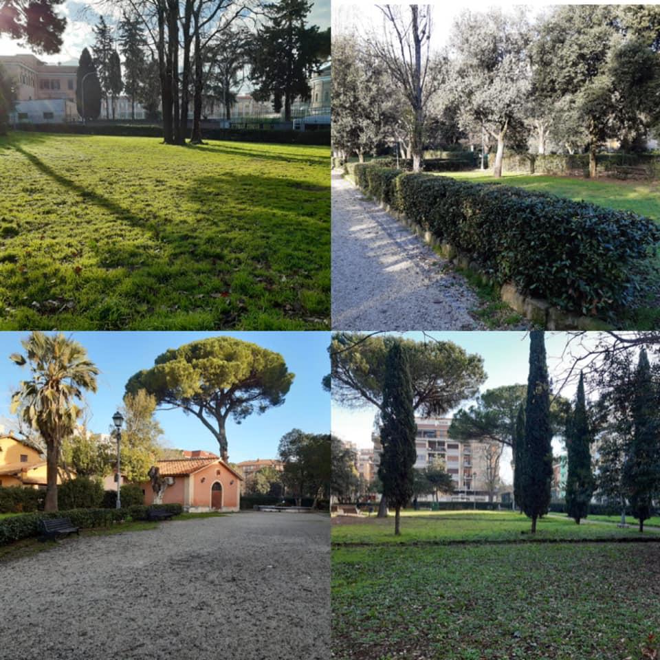 alberi-verde-piante