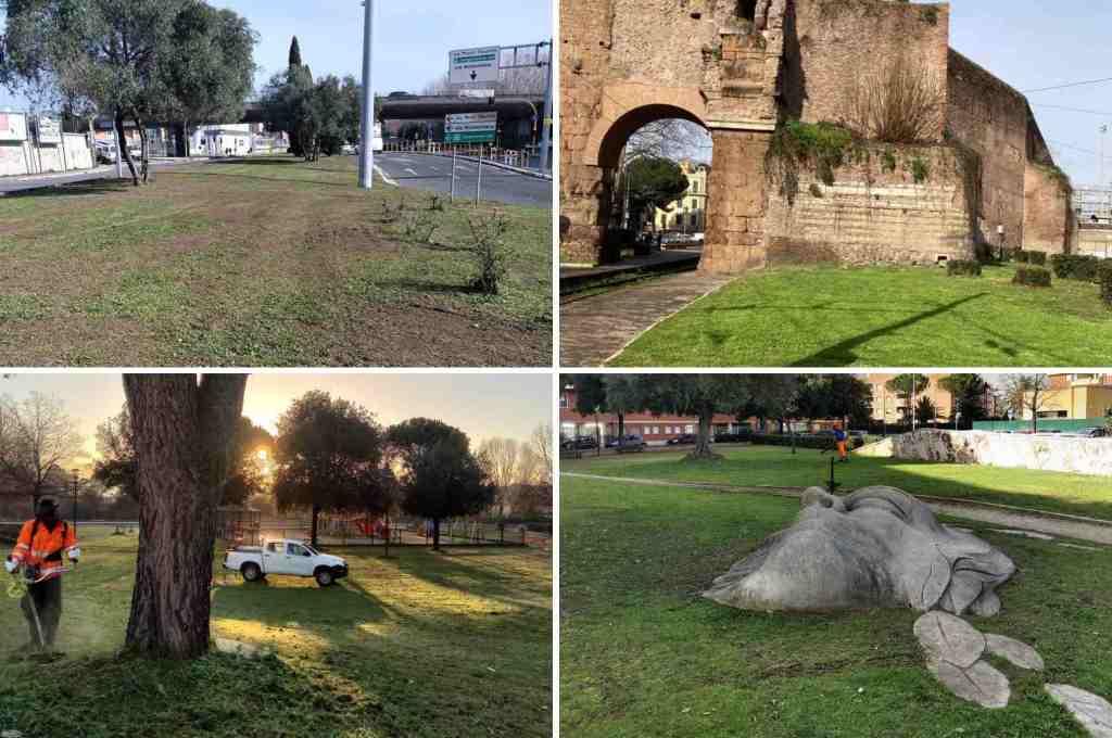 verde-parco-albero-arco