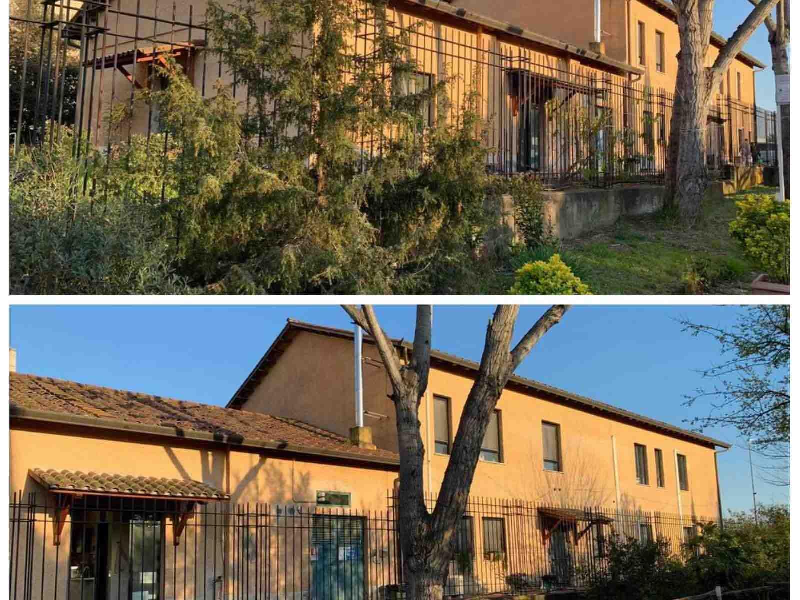 casa-tetto-albero-cielo